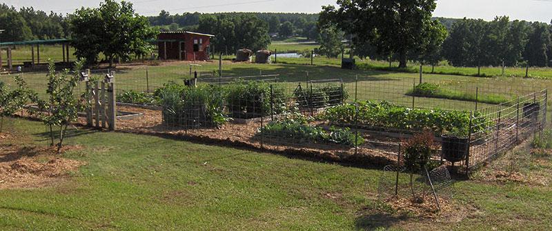 Social Storm Properties Farming