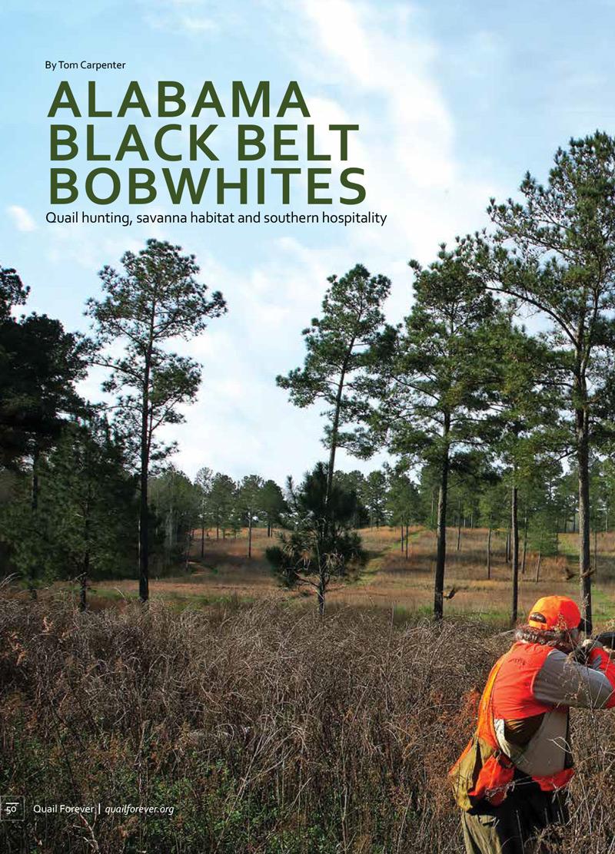 Alabama Black Belt Bobwhites Post