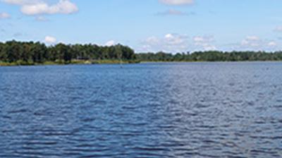 Woodland Lake Plantation