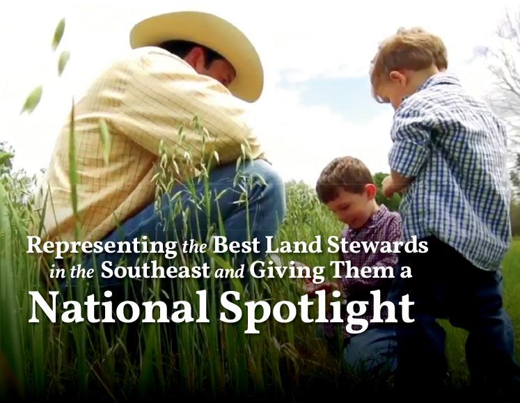 National Spotlight