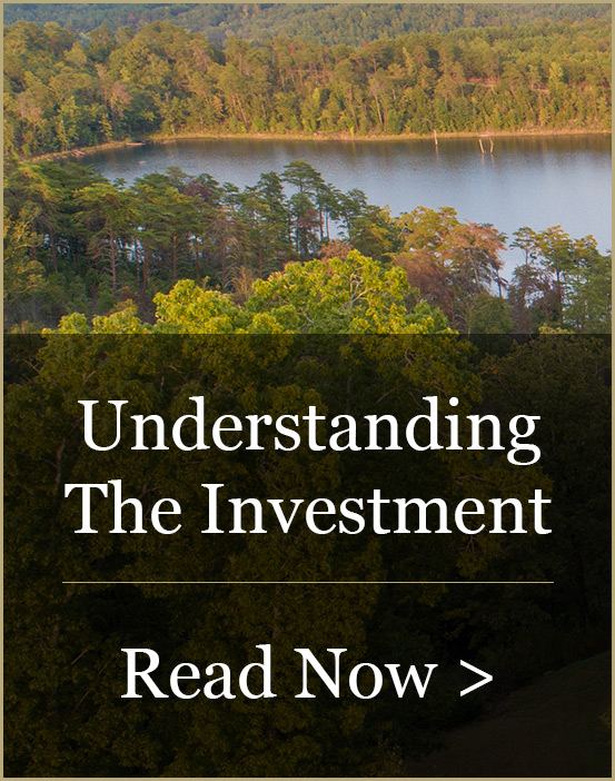 Understanding The Investment