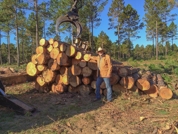 Social Storm Properties Logging