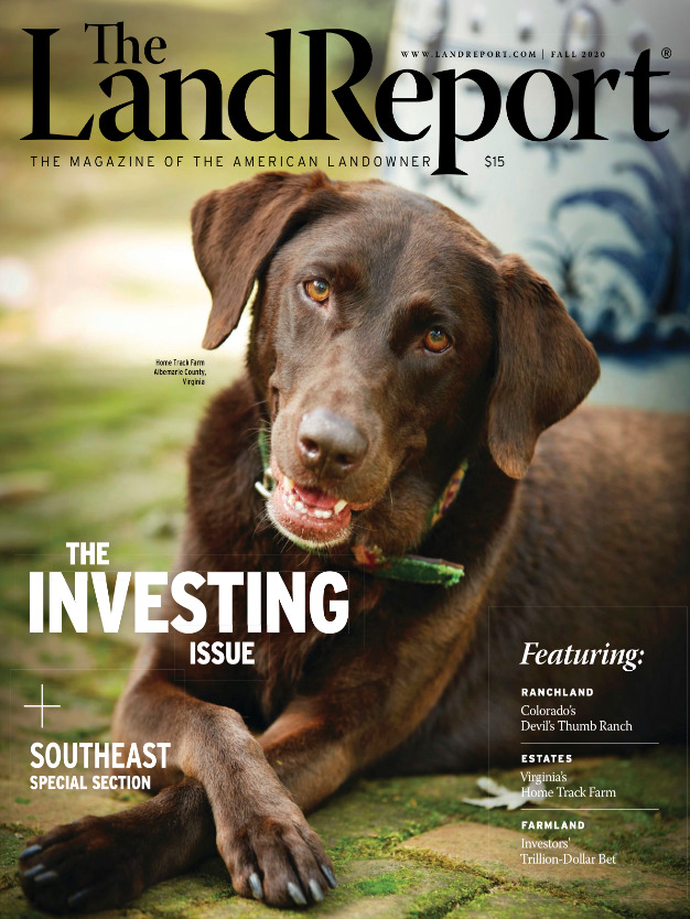 The Land Report Deep Creek Plantation